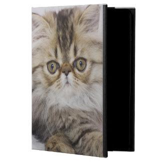Persian Cat, Felis catus, Brown Tabby, Kitten, iPad Air Cases