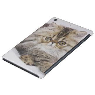 Persian Cat, Felis catus, Brown Tabby, Kitten, iPad Mini Retina Case