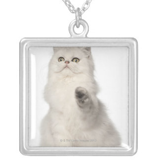 Persian cat sitting silver plated necklace
