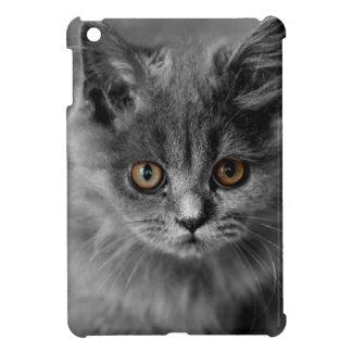 Persian Kitten iPad Mini Covers