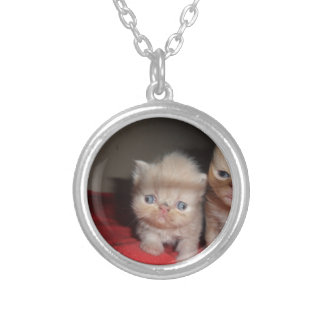 Persian Kittens Silver Plated Necklace