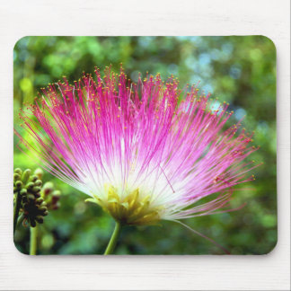 Persian Silk Tree Flower Mouse Mat