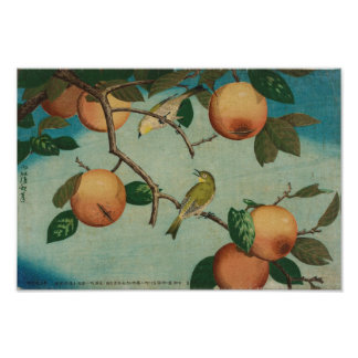 Persimmons and White-Eyes 1880 Japanese Print