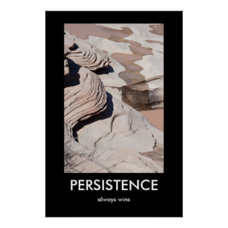 PERSISTENCE, always wins Demotivational Poster