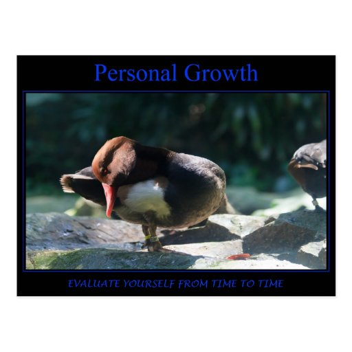Personal Growth Post Cards