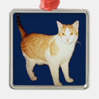Personal Picture Ornament