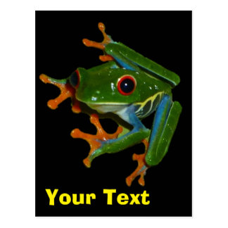 Personalise Costa Rica Red Eyed Frog Postcard