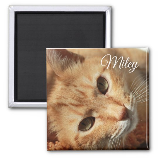 Personalised Cat Photo and Name Magnet