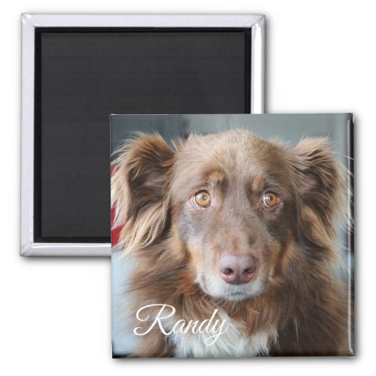 Personalised Dog Photo and Name Magnet