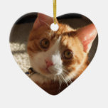 Personalised Pet Photo Heart Ornament