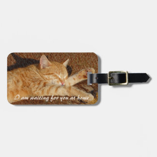 Personalised pet's photo luggage tag