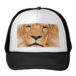 personalize and Customize  Lion Picture Cap
