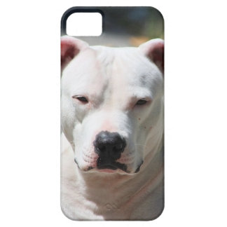 Personalize this Dog Photo Phone Case