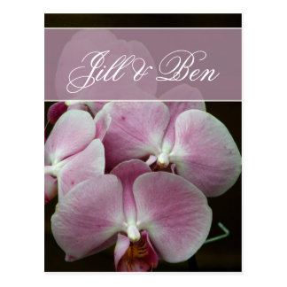 Personalize your own orchid design postcard