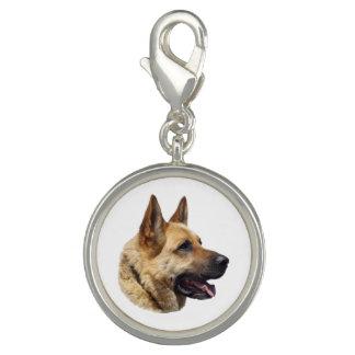 Personalized Alsatian German shepherd dog