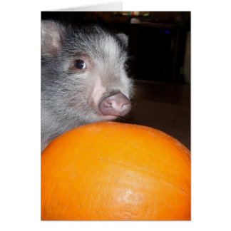 Personalized Baby Mini Pig and Pumpkin Card