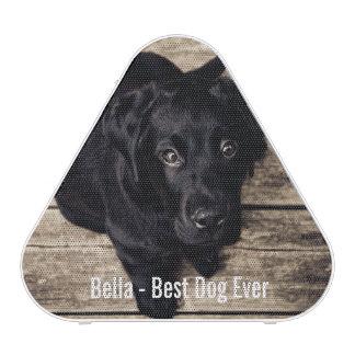 Personalized Black Lab Dog Photo and Dog Name Speaker