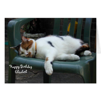 Personalized Calico cat curled up chair Birthday Card