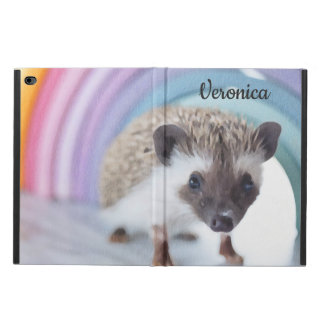 Personalized Colorfully Tiny Hedgehog Powis iPad Air 2 Case
