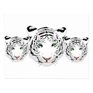 Personalized Custom Snow Tiger Postcard