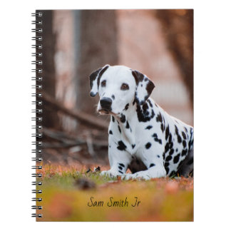 Personalized// Dalmatian Dog Notebook