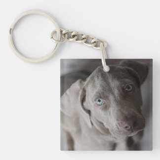 Personalized Favorite Pet Keychain