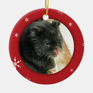Personalized Hamster/Pet Photo Holiday Ceramic Ornament