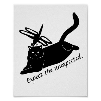 Personalized Happy Dragonfly Angry Cat funny black Poster