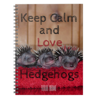 Personalized    Keep calm and love hedgehogs Notebook