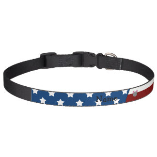 Personalized name Patriotic mouse Dog Collar