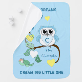 Personalized Owl blue baby Baby Blanket