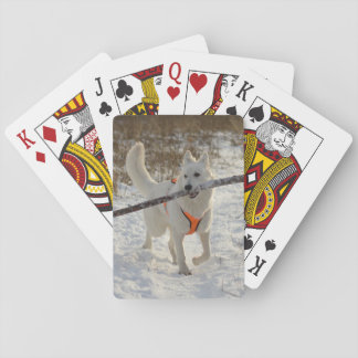 Personalized Pet Photo Playing Cards