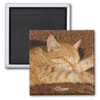 Personalized pet's photo square magnet