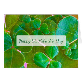 Personalized Shamrock St Patrick's Day Card