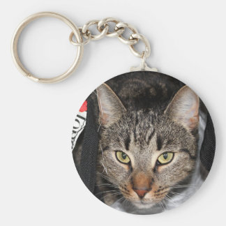 Personalized this Cute Cat Photo Key Chain
