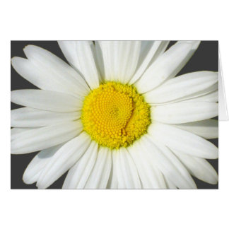 Personalized White Daisy Blank Stationary Card Greeting Card