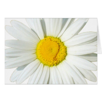 Personalized White Daisy Wedding Greeting Card Cards