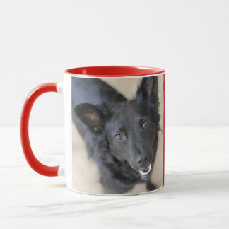 Personalized Woof Central Dog Mug