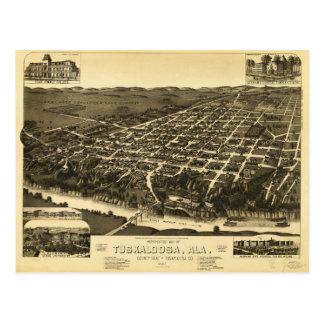 Perspective Map of Tuskaloosa Alabama (1887) Postcard