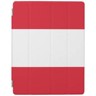 Peru Flag iPad Cover