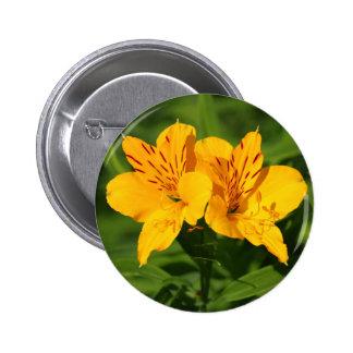 Peruvian Lilies Pin