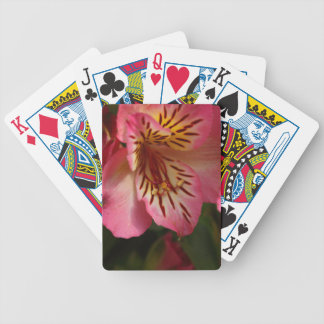 Peruvian lily (Alstroemeria aurea) Bicycle Playing Cards