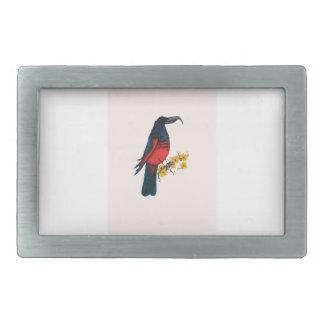 pesquet's parrot, tony fernandes belt buckle