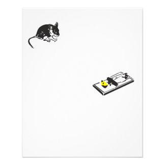 pest control 11.5 cm x 14 cm flyer