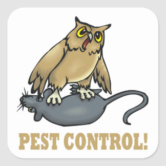 Pest Control Square Stickers