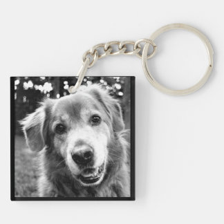 Pet Collection - The Many Faces of Dogs Key Ring