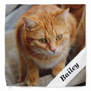 Pet Dog Cat Personalized Photo Template Bandana