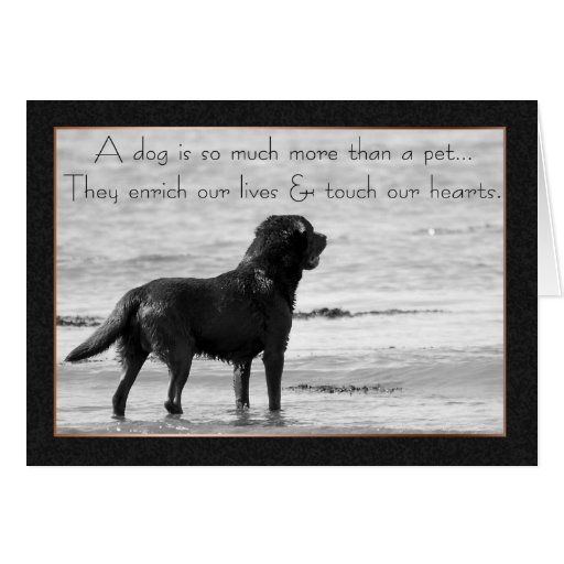Pet Dog Sympathy Card - Touch Our Hearts | Zazzle