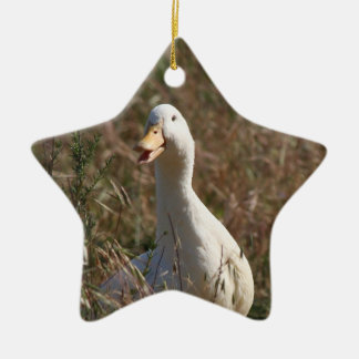 Pet Duck Ornament