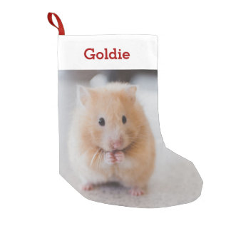 Pet Hamster Lover Photo & Name Personalized Small Christmas Stocking